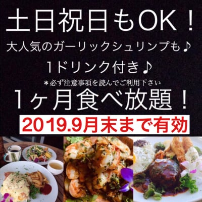 Hawaiian Cafe Dining KOA」お得なウェブチケット 2019年月9末まで有効・1か月定額制食べ放題チケット19980円(定期便15980円)