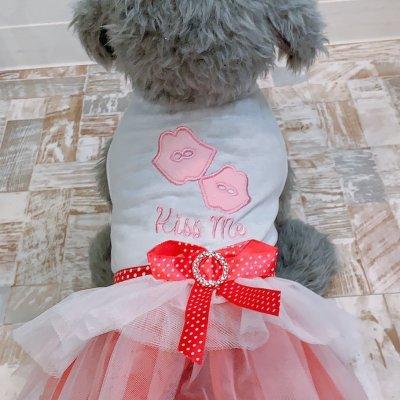 ワンちゃん用チュール付Tシャツワンピース ピンク
