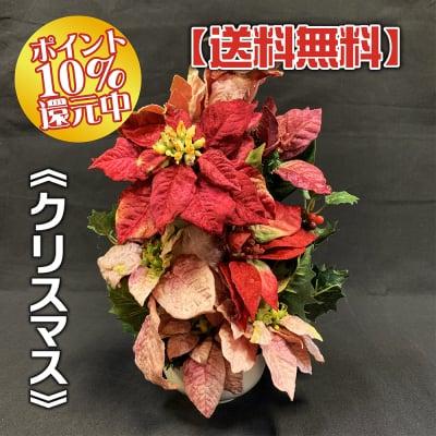 《送料無料》【季節のアレンジメント・冬】クリスマスの小さなかわいいアレンジメントフラワー/置き41