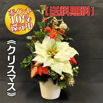 《送料無料》【造花】白いポインセチアのクリスマスアレンジ/ok-0044