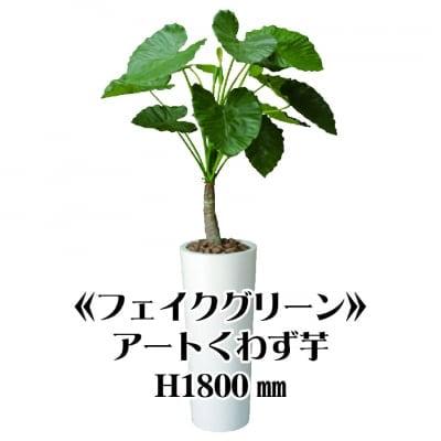 《送料無料》【フェイクグリーン】アートくわず芋/fg-0001
