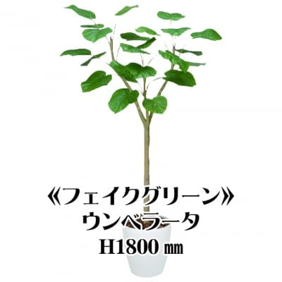 《送料無料》【フェイクグリーン】ウンベラータ1800/fg-0003