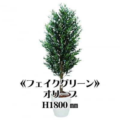 《送料無料》【フェイクグリーン】オリーブ1800/fg-0004