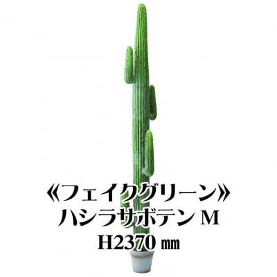 《送料無料》【フェイクグリーン】ハシラサボテンM2370/fg-0005