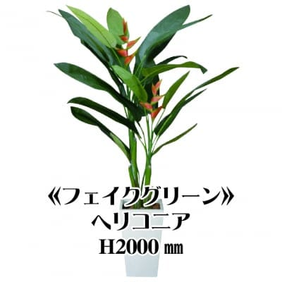 《送料無料》【フェイクグリーン】ヘリコニア2000/fg-0008