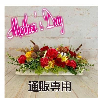 【通販専用】A 数量限定/母の日ギフト/カーネーション/母の日プレゼント...