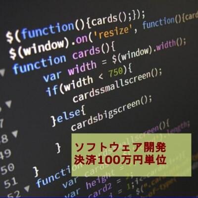 ソフトウェア開発決済 100万円単位