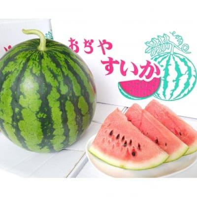 【糖度12以上】農園ビギンさんのスイカ【2Lサイズ】2玉入|新潟県小千谷産|お中元|贈り物にもおすすめ