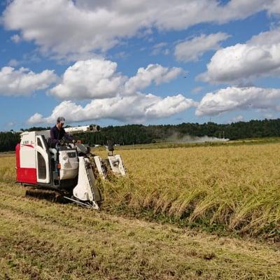 SS様専用自然栽培米