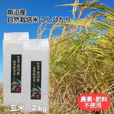 【魚沼産|自然栽培米コシヒカリ】「玄米」2㎏【無農薬|無肥料】