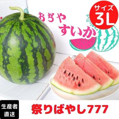 【糖度12以上】農園ビギンさんのスイカ【3Lサイズ】1玉|新潟県小千谷産|お中元|贈り物にもおすすめ