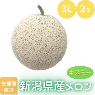 【メロン/キスミー3L/2玉】【高ポイント】