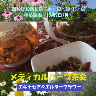 【現地払い】10月10日(木)13:30〜15:00/メディカルハーブ茶会1回目/要予約10月7日(月)まで
