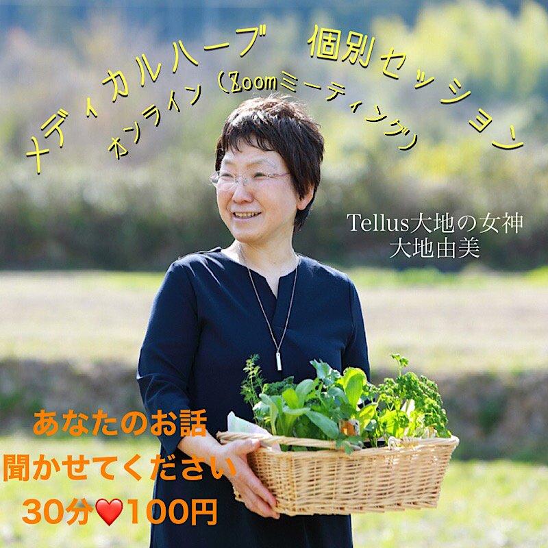 【オンライン】個別カウンセリングセッション/メディカルメディカルハーブ(植物療法)のイメージその1
