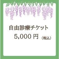 自由診療用チケット/5,000円(税込)のイメージその1