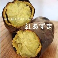 【まもなく終了】無農薬の焼き芋  ほくほくの紅あずま(無農薬)