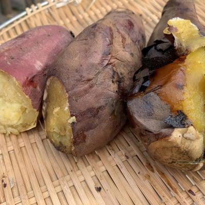 店頭受取 石焼き芋の食べ比べセット
