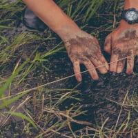 6/24(月)[自然体験・群馬県・子連れOK]不耕起栽培の田植えをしよう!