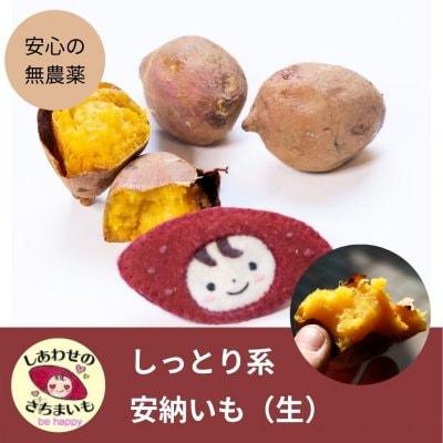 [生]安納芋 2キロ 無農薬 【10月中旬〜11月発送】