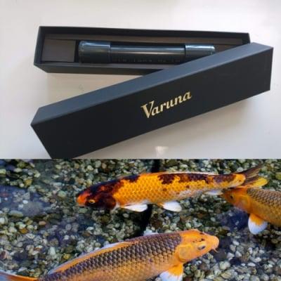 【通販】ヴァルナミニ 15㎝ 水槽用(500ℓ)(動画による説明もご覧ください)熱帯魚、アロワナ、金魚、らんちゅうなどをアクアリウムで飼育されている方におススメ!