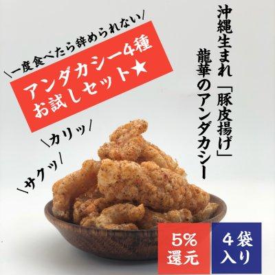 【沖縄名物お菓子】4袋入り|豚皮チップス|アンダカシー4種(うま塩...