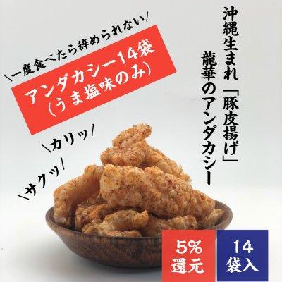 【沖縄名物お菓子】14袋入り|豚皮チップス|アンダカシー(うま塩味)