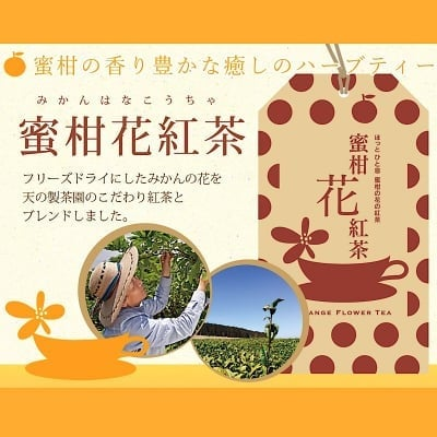 蜜柑花紅茶 ティーバック6袋入り【蜜柑花の優しい香りほっこり美味しい】WakuWaku農園の紅茶 フリーズドライのティーバックになっているのでお手軽にお飲みいただけます。