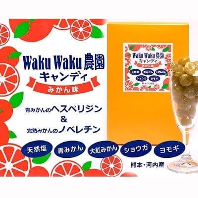 キャンディ みかん味 50g×2 これからの季節に最適! WakuWaku農園のキャンディで美味しくアレルギーケア 花粉症対策 【くしゃみ・鼻水のアレルギー症状に】