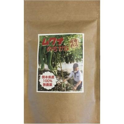 ムクナ豆パウダー ムクナのちから 熊本県産 100% 無農薬無施肥 高品質