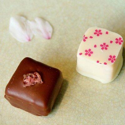 【季節限定 桜ボンボンショコラ2種4個セット】桜餅のような和風チョコレート