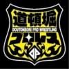 【チケット】道頓堀プロレス 主催大会共通:自由席(カード決済不可)