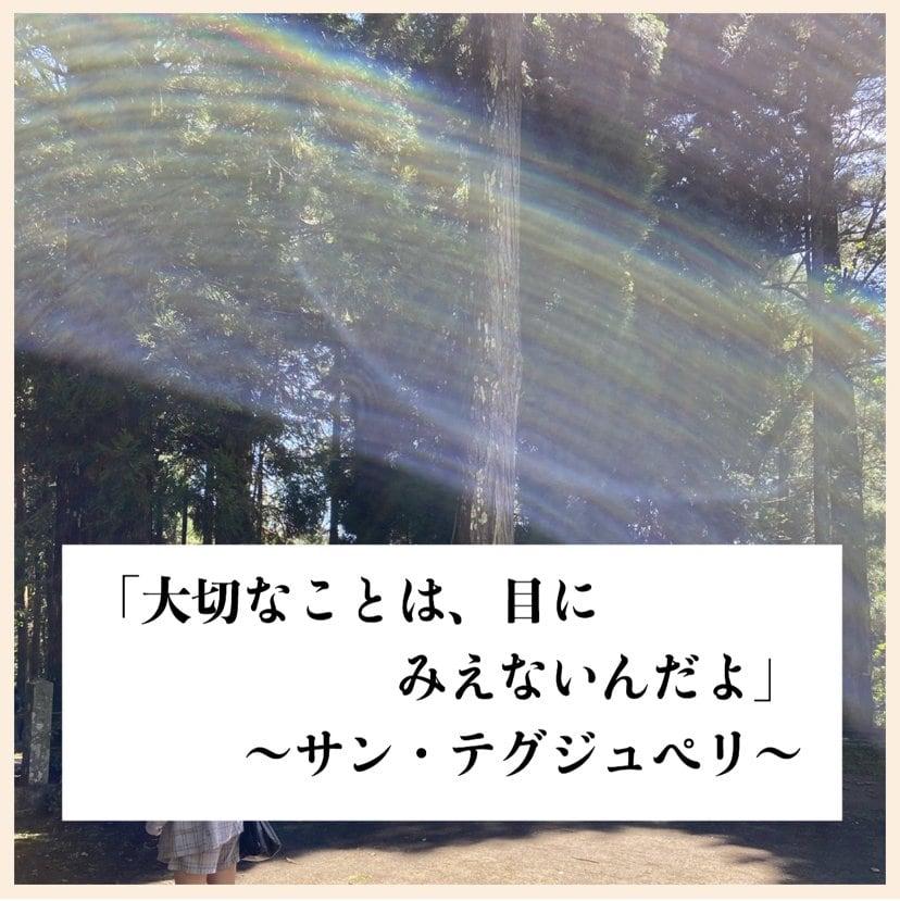 高ポイント還元!初回限定/期間限定/開運/ぽえむの神ことば/Webカウンセリングのイメージその2