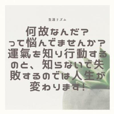 12月24日つるちゃん支局専用
