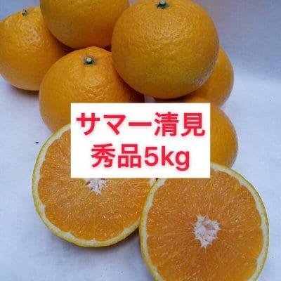 サマー清見〜秀品階級混合5㎏〜送料無料(北海道・沖縄別途)