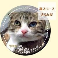 アポロくん缶バッチ【猫スペースきぶん屋】