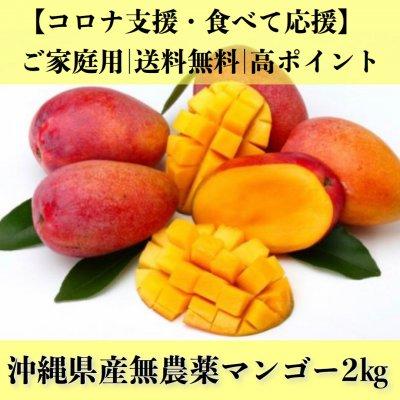 【送料無料】沖縄県産無農薬アップルマンゴー2㎏/コロナ支援/食べて応援
