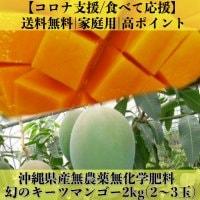 【送料無料】幻の沖縄県産無農薬キーツマンゴー2㎏(2〜3個)/コロナ支援/食べて応援