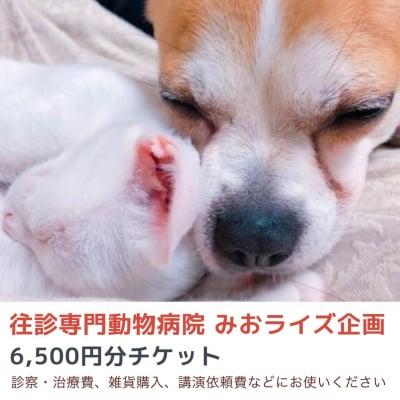 みおライズ企画6500円お買い物チケット