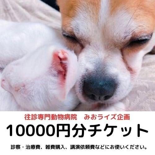 みおライズ企画10000円お買い物チケットのイメージその1