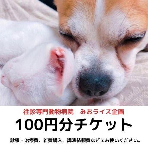 みおライズ企画100円お買い物チケットのイメージその1