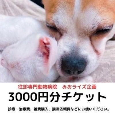 みおライズ企画3000円お買い物チケット
