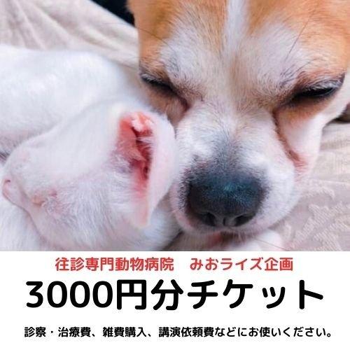 みおライズ企画3000円お買い物チケットのイメージその1