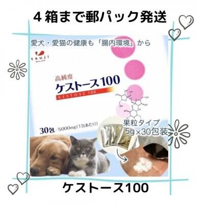【郵パック4箱まで】高純度ケストース100(腸内環境改善でアレルギー...