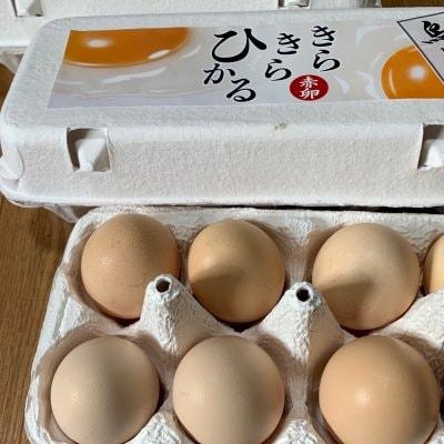 純系種烏骨鶏のオーガニック平飼い卵 1箱30個入「養鶏場直送品」