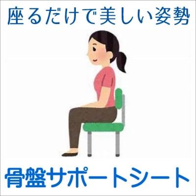 骨盤サポートシート【店頭販売専用】