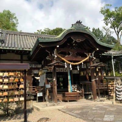 【9月16日香川】大和易 お茶会