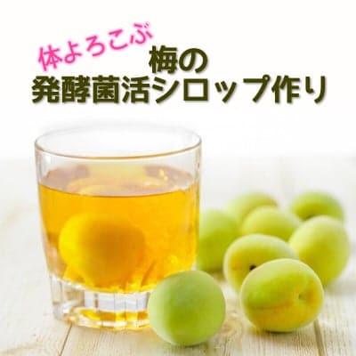 【前振込み】6/27(木)15:00〜17:00/体よろこぶ 梅の発酵菌活シロップ作り