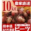 熊本県あさぎり町産 ビーツ 10kg 有機栽培 野菜 栄養 予約販売