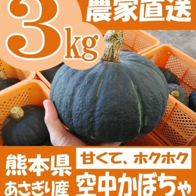 空中かぼちゃ 熊本県あさぎり町産 冬至 栗えびす 計約3kg