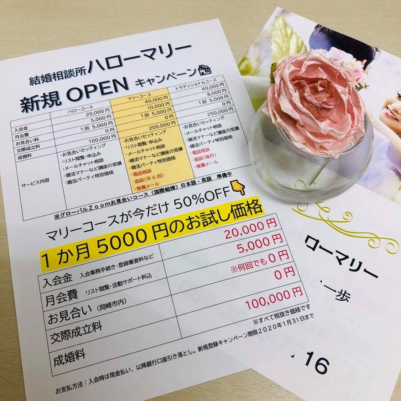 結婚相談所 ハローマリー《紹介》《特典有》     注)表記上の料金(税込330円)はかかりません。ポイント(10ポイント)も対象外となります。のイメージその2